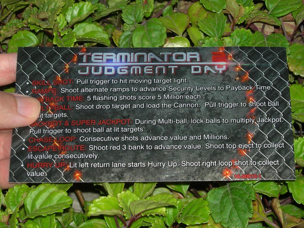 Terminator%202%20Custom%20Pinball%20Card%20Rules%20print1c.JPG