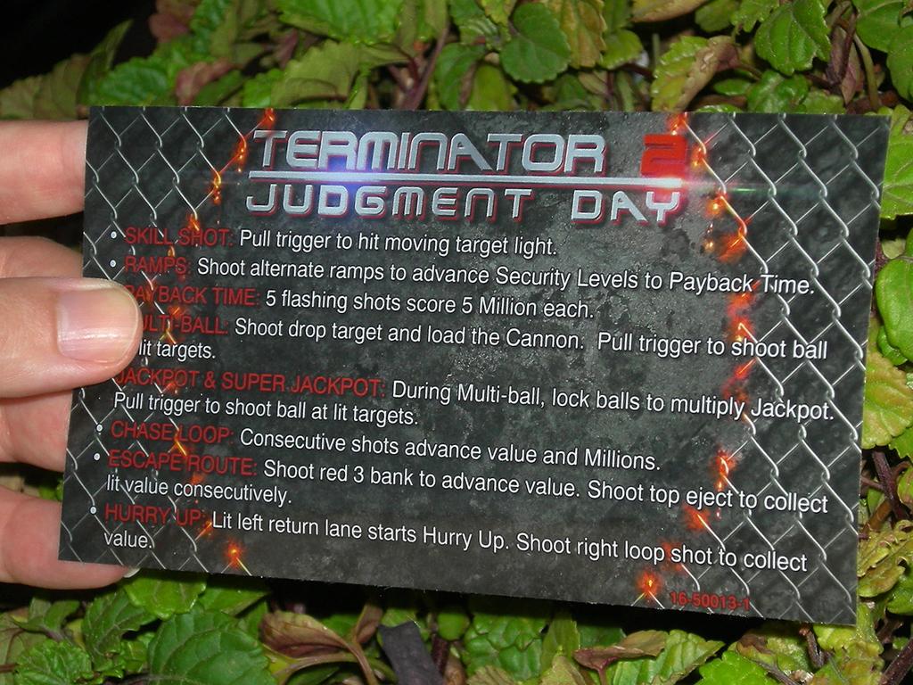 Terminator%202%20Custom%20Pinball%20Card%20Rules%20print2c.JPG