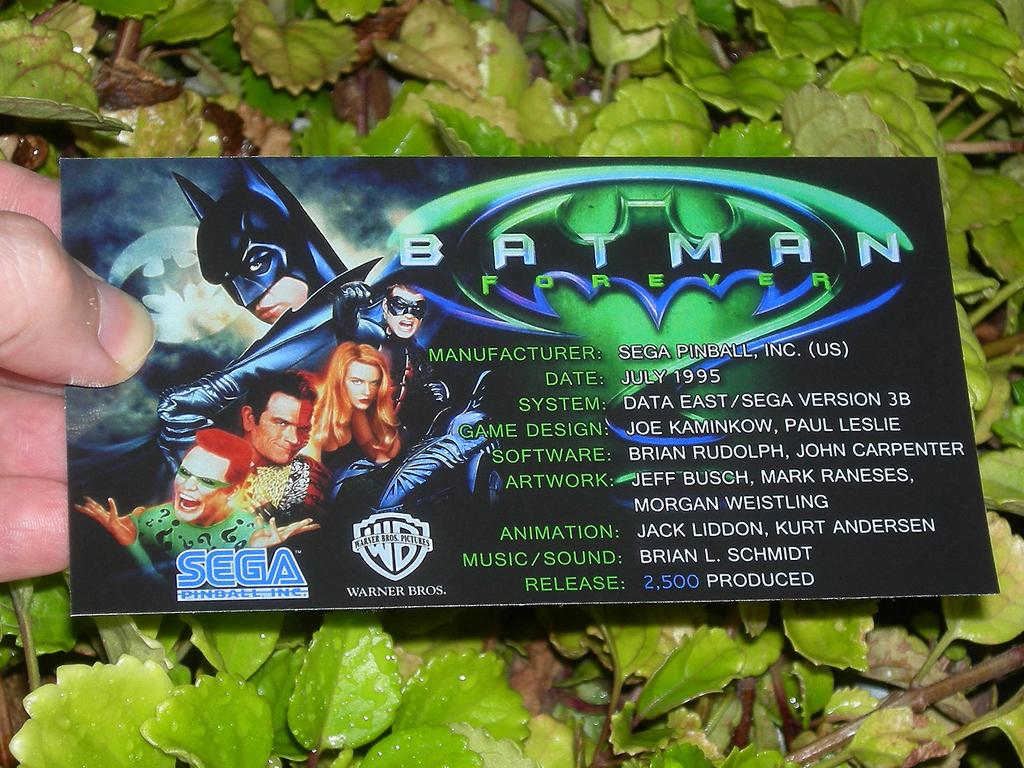 Batman Forever Custom Pinball Crew print1c