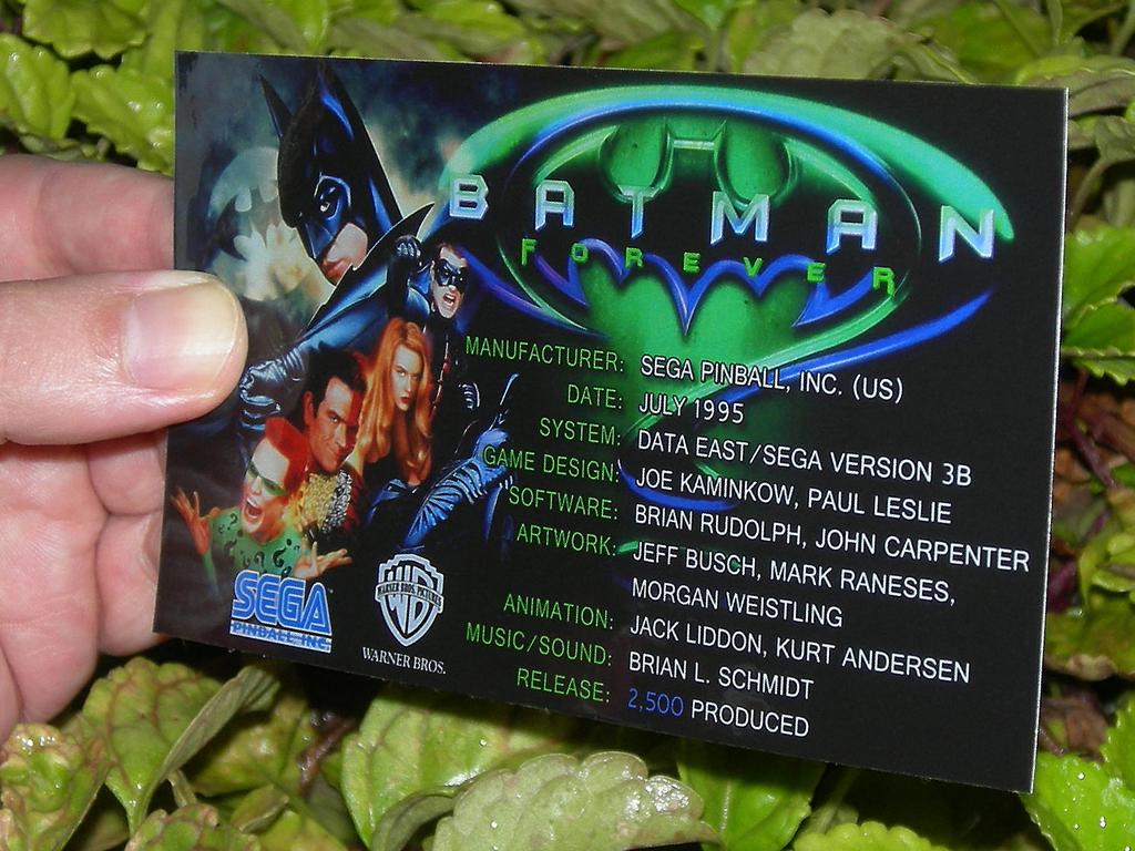 Batman Forever Custom Pinball Crew print2c