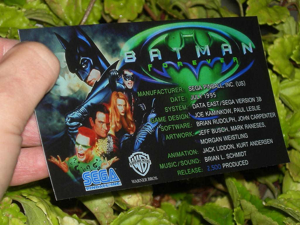 Batman Forever Custom Pinball Crew print3c