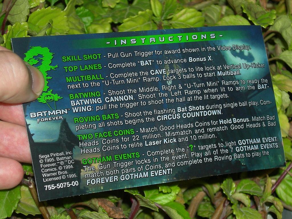 Batman Forever Custom Pinball Rules print3c