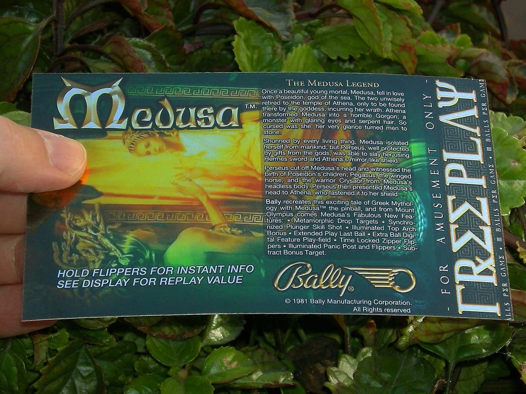 Medusa%20Custom%20Pinball%20Card%20Free%20Play%20print1.JPG