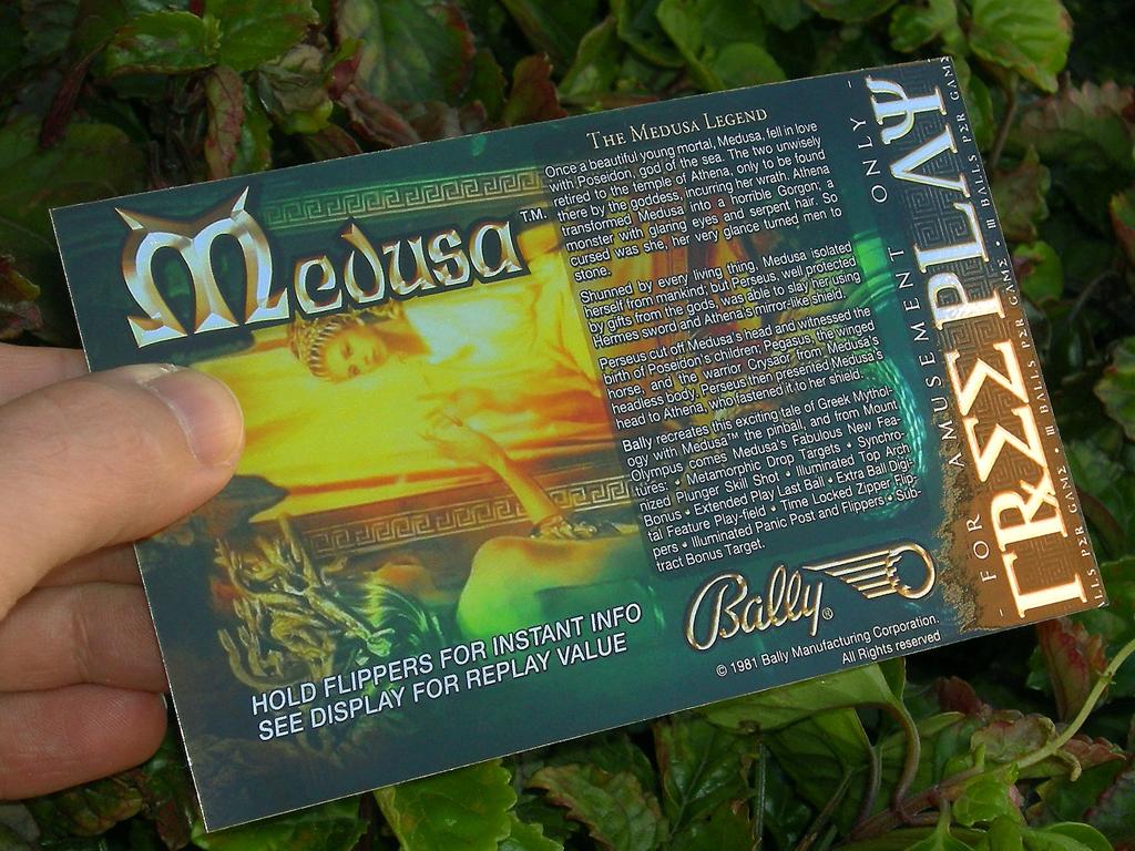 Medusa%20Custom%20Pinball%20Card%20Free%20Play%20print3.JPG