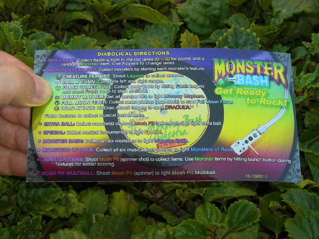 Monster%20Bash%20Custom%20Pinball%20Card%20Rules%20print1.jpg