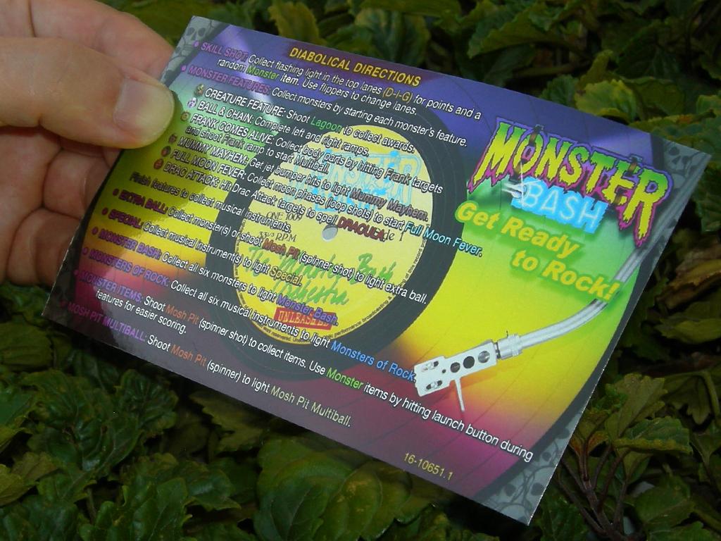 Monster%20Bash%20Custom%20Pinball%20Card%20Rules%20print3.jpg
