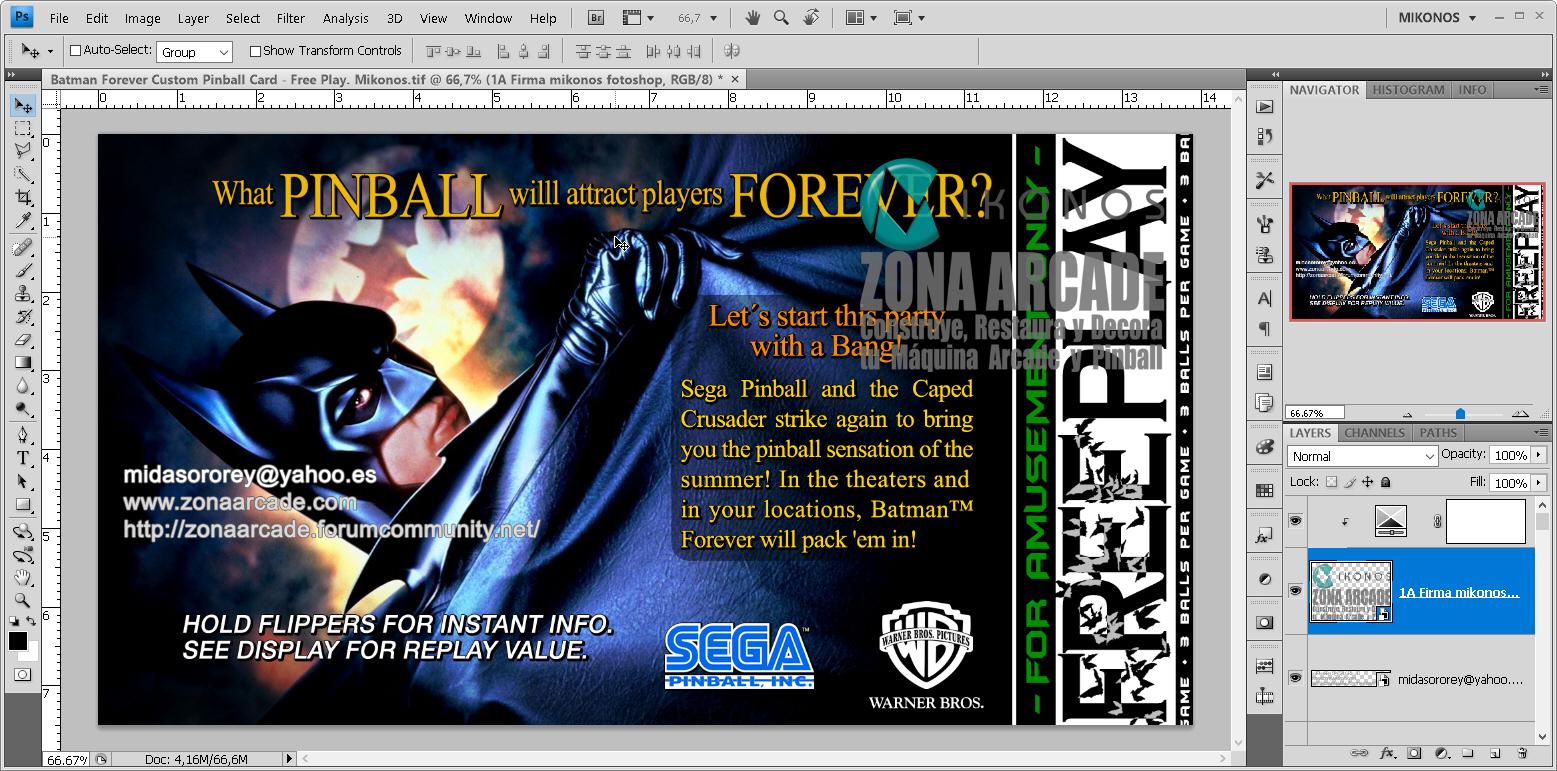 Batman%20Forever%20Custom%20Pinball%20Card%20-%20Free%20Play.%20Mikonos1.jpg